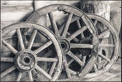Wooden weels (Dr Alex O Shevchenko) Tags: wood bw monochrome analogue 135 nikon f4 nikkor 5014 ilford delta400 ilforddelta400 iso400 film d76