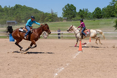 JBC_6318.jpg (Jim Babbage) Tags: krahc bethany appaloosa horses horseshow 2018