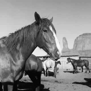 Monument Valley, Arizona. 5.20.18.