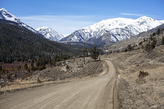 The View from the Valley (Miss Marisa Renee) Tags: marisarenee canon digital digitalphotography canon5dmarkii wyoming travel vacation landscape landscapephotography sky blue clouds road roadtrip dirtroad shoshonenationalforest absarokarange rockymountains forest snowcapped mountains wilderness valley view spring springbreak2018 march march2018