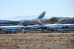 Evergreen Aircraft (707-348C) Tags: marana kmzj mzj pinal dc9s dc9 evergreen airliner jetliner boeing douglas freighter cargo boeing747 boeing747s b742 n915f n916f