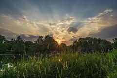 sun goes sleep (PLADIR) Tags: berlin sun sonne sonnenuntergang sundown sunset wuhlesee wuhle wolken clouds sonnenstrahlen sunbeams sony a77 slta77ii outdoor sky landschaft abend sunrays