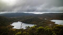Cradle Mountain National Park (Val A[d]venture) Tags: australie adventure australia valadventure valaventure tasmania tasmanie travel backpacker canon eosm3 eos wildlife oz aussie cradlemountainnationalpark cradlemountain nationalpark