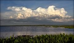 Prairie Lake (gatorgalpics) Tags: paynesprairie highwater prairielake us441 paynesprairiepreservestatepark thunderhead dueeast massivecloud 235inexplore