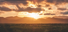Sunset Over the Fields of Iceland (shimizacken) Tags: ifttt 500px sunset fields mountains iceland ísland summer horizon clouds vic gold