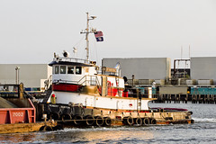 r_180608288_beat0048_a (Mitch Waxman) Tags: brooklyn eastrivershoreline gowanusbay newyorkcity newyorkharbor tugboat newyork