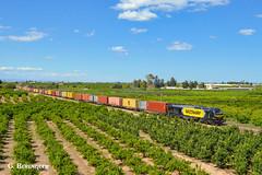 Medway Teco (ɢ. ʙᴇʀᴇɴɢᴜᴇʀ [ ō-]) Tags: e50333 matilde euro4000 335 335033 5033 green landscape sky train railroad railway ffcc naranjos
