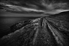 Furrowed path (Ger208k) Tags: ireland dublin howth horizon coastline pathway furrows infrared ir landscape seascape 720nm blackandwhite gerardmcgrath greyscale