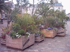 jardin d'été place st sauveur - Caen (pyc14000) Tags: caen calvados normandie 14