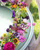 colors (LovelyArts.de) Tags: flower flowers deco decoration garden gardening blumen color colors colorful