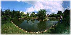 Little lake in Feked / Hungary (Szemeredi Photos/ clevernails) Tags: hungary feked village lake park centre festival walk water plant tree lotusflower bush people frog sky panorama outdoor