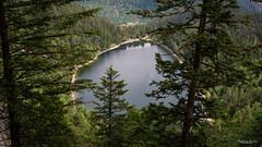 26052018-IMG_2279 (Steffan Photos) Tags: labresse grandest france fr randonnée vosges la bresse lac corbeaux bramont sechemer étang refuge union col vierge vieille montagne