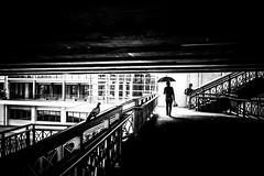 Bangkok (tomabenz) Tags: sony a7rm2 noiretblanc urban asia street photography zeiss streetview noir et blanc umbrella bw human geometry black white monochrome bnw people blackandwhite humaningeometry sonya7rm2 streetphotography
