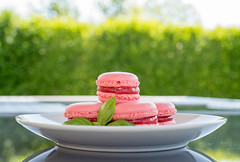 (Alexandru Panait) Tags: macaron french pastry homemade fraise strawberry basil