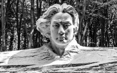 Song Ta -Why Do They Never Take Colour Photos? (Pacificnw.co.uk) Tags: 2018 songta casssculpturefoundation goodwood whydotheynevertakecolourphotos daysout blackwhite day june england flickr westsussex