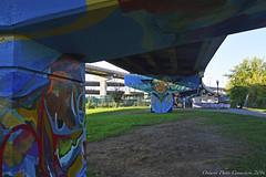 3030 (ontario photo connection) Tags: toronto mural artistic art ontario canada neighbourhood urban