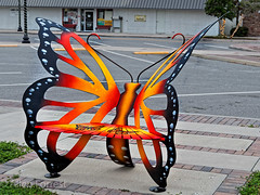 Butterfly Bench (AL904) Tags: publicart bushnell florida usa