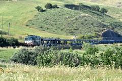D345 1110 (luciano.deruvo) Tags: bisarche d345 mercitalia trenomerci automobili stazione basilicata puglia