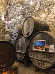 Old Wine Casks (dcnelson1898) Tags: montepulciano tuscany italy town wine travel vacation countryside dericciwinery