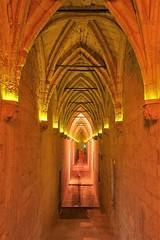 Palais des Papes - Avignon (hervétherry) Tags: france paca provencealpescôtedazur vaucluse avignon canon eos 7d efs 1022 palais papes nuit pose longue long exposure