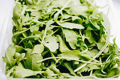 Close up of fresh rucola leaves. Close up (wuestenigel) Tags: spice close condiment leaf background healthy vegan plant up ruccola pile health isolated white vegetable eating branch rucola fresh sprouts green arugula freshness ingredient vegetarian salad vitamin spring natural herbal studio herb food raw salat shot heap greenery rocket rukola organic