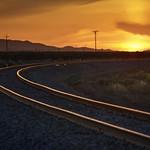 Golden track to golden sky thumbnail