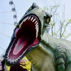 RRRrrraaaaarrrrrrr! (R.A. Killmer) Tags: dinosaur niagara falls canada ontario tourist trap teeth mouth trex tyrannosaurus rex jurassic golf