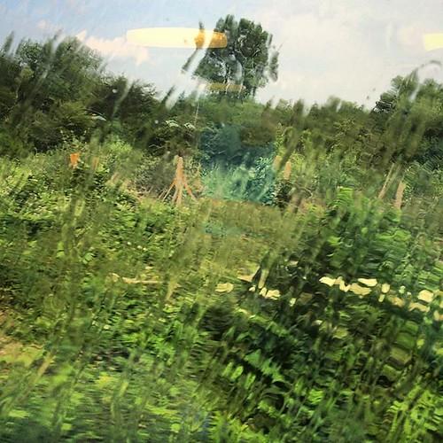 #rouenparisrouen #train #normandie