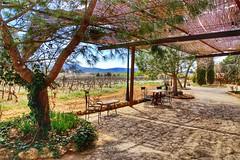 Clos Vineyards, Les Useres, Castellon, Spain (mtm2935) Tags: vineyardlandscape vineroutes vineyards wine viñedos vino spain valencia castello castellon useras lesuseres rutadelvino