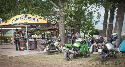 "Rolling Wheels Bike Week 2018 (239) • <a style=""font-size:0.8em;"" href=""http://www.flickr.com/photos/156470846@N06/41873362905/"" target=""_blank"">View on Flickr</a>"