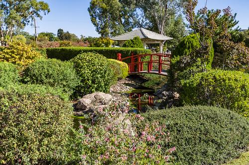 Osawano Japanese Gardens, Wellington