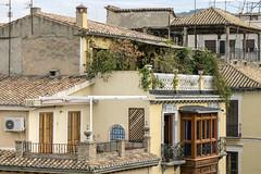 La vida en Granada