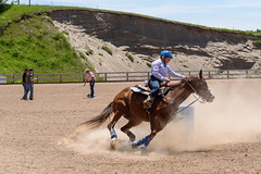 JBC_6465.jpg (Jim Babbage) Tags: krahc bethany appaloosa horses horseshow 2018