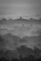 Borobudur Temple (tehhanlin) Tags: candiborobudur borobudur temple indonesia places place travel sunrise blackandwhite misty nature naturallight fujifilm fuji landscape sky asia buddhist ngc architecture