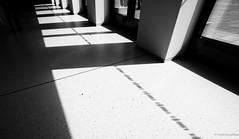 Shadow on the floor (frankdorgathen) Tags: minimalismus minimalistisch minimalistic minimalism schwarzweiss schwarzweis blackandwhite monochrome architektur architecture ruhrpott ruhrgebiet bochum anneliesebrostmusikforumruhr gebäude building sonne licht schatten sun light shadow