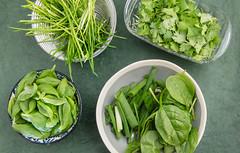 Baby spinach and scallion. (annick vanderschelden) Tags: bowl grey spinach babyspinach chopped scallion green vegetables ingredients chives cilantro basil pesto paste