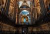 Barcelona Cathedral (soomness) Tags: cathedral church architecture design geometry symmetry symmetrical travel travelphotography europe fujifilmxt2 fujifilm fujinon fuji longexposure xt2 xseries xf16mmf14wr spain españa barcelona catalonia