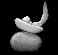 Prawn crackers - Chips de crevette (Charlotte P.Denoel) Tags: fineartphotography shrimp crevette artistic art contrast conceptuel concept nourriture aliment food blackandwhite bw noiretblanc nb