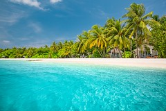 Paradise (icemanphotos) Tags: calmness relax sky resort luxury ariatoll green blue sand jungle solitude paradise ocean sea lagoon beach beautiful maldives