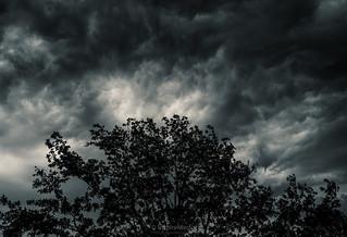 SonyAlpha just before the rain last week by #MrOfColorsPhotography #FotoSipkes #InspireMediaGroningen