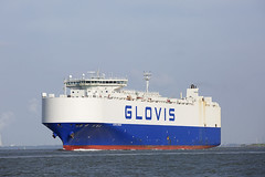 GLOVIS COUGAR (angelo vlassenrood) Tags: ship vessel nederland netherlands photo shoot shot photoshot picture westerschelde boot schip canon angelo walsoorden cargo gloviscougar roro