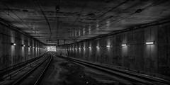 boronia-0155-ps-w (pw-pix) Tags: concrete tunnel rail rails traintracks overhead wires wiring lights dirt grafitti alightattheendofthetunnel grey white black silver silvery shine light curved curves insulators dark gloomy gritty urban fluorescent lighting bw blackandwhite monochrome boroniarailwaystation boroniastation boronia easternsuburbs outereast melbourne victoria australia peterwilliams pwpix wwwpwpixstudio pwpixstudio