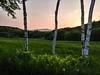 Late Spring Sunset (Kyle Merrihew Photography) Tags: sunset landscape sun trees birch grass mountain cloud