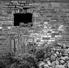 The wall (Rosenthal Photography) Tags: asa400 rodinal15021°c11min 20180501 mittelformat bnw ff120 schwarzweiss ilfordhp5 analog 6x6 zeissikonnettar51816 bw wall garden stones spring may sk schneiderkreuznach rollei rolleiflex f35 73mm 35f ilford fp4 fp4plus rodinal 150 epson v800