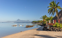 Gauguin's beach on Tahiti (powerfocusfotografie) Tags: tahiti moorea pacific polynesia frenchpolynesia ocean island gauguin painter travelling outdoors nature iaorana beach holiday mountains palmtrees henk nikond90 powerfocusfotografie