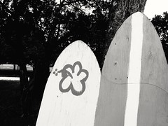 [ Surf's Down ] (ǝlɐǝq ˙M ʍǝɥʇʇɐW) Tags: surfboards oldstyle surfboardparking phoneditin 23skiddoo 2018 june downtime hillcountry bw texas parking board surf