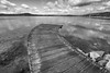 il pontile (mat56.) Tags: paesaggi paesaggio panorama lago lake viverone biella piemonte pontile acqua water cielo sky nuvole nubi clouds riflessi reflections bianco nero white black monocromo monochrome pier antonio romei mat56 wood