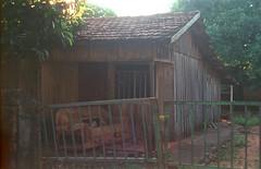 Porch Couch  [Loanda - PR] (a.ninguem) Tags: morning pentax k1000 loanda paraná filme film 35mm city small cidade dawn kodak colorplus