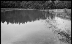 flooded pasture, agricultural fence, overflow, French Broad River, Biltmore Estate, Asheville, North Carolina, FED 4, Industar 26, Arista.Edu 200, Ilford Ilfosol 3 developer, 6.3.18 (steve aimone) Tags: pasture flooded overflow frenchbroadriver fence agricultural water reflections fed4 industar26 aristaedu200 ilfordilfosol3developer biltmore biltmoreestate asheville northcarolina rangefinder soviet 35mm 35mmfilm film blackandwhite monochrome monochromatic
