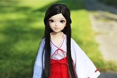 Shrine Maiden #2 ♥ (SunShineRu) Tags: minifee mnf sarang 14 2014 sarang14 sarang2014 shrine maiden japan kimono hakana slim msd fairyland bjd ball jointed doll dolls